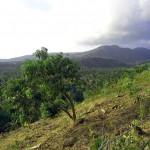 Batu-Layar-Hill-LombokLand